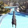 goat-simulator-16