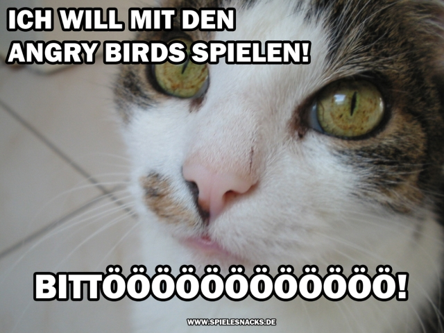 Cat Content Comics - Angry Birds