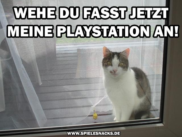 cat comic - playstation