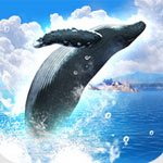 Real Whales Spieletest: Mauer Foto-Trip