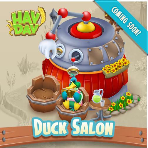 Was machen die Enten denn da im Salon? Neue Federfrisuren vielleicht?