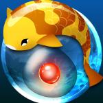 Zen Koi: Fische züchten für die Seele